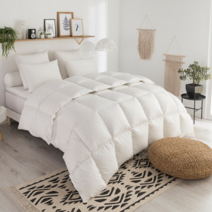 Couette Tradition LEGERE - 70% Duvet d'Oie